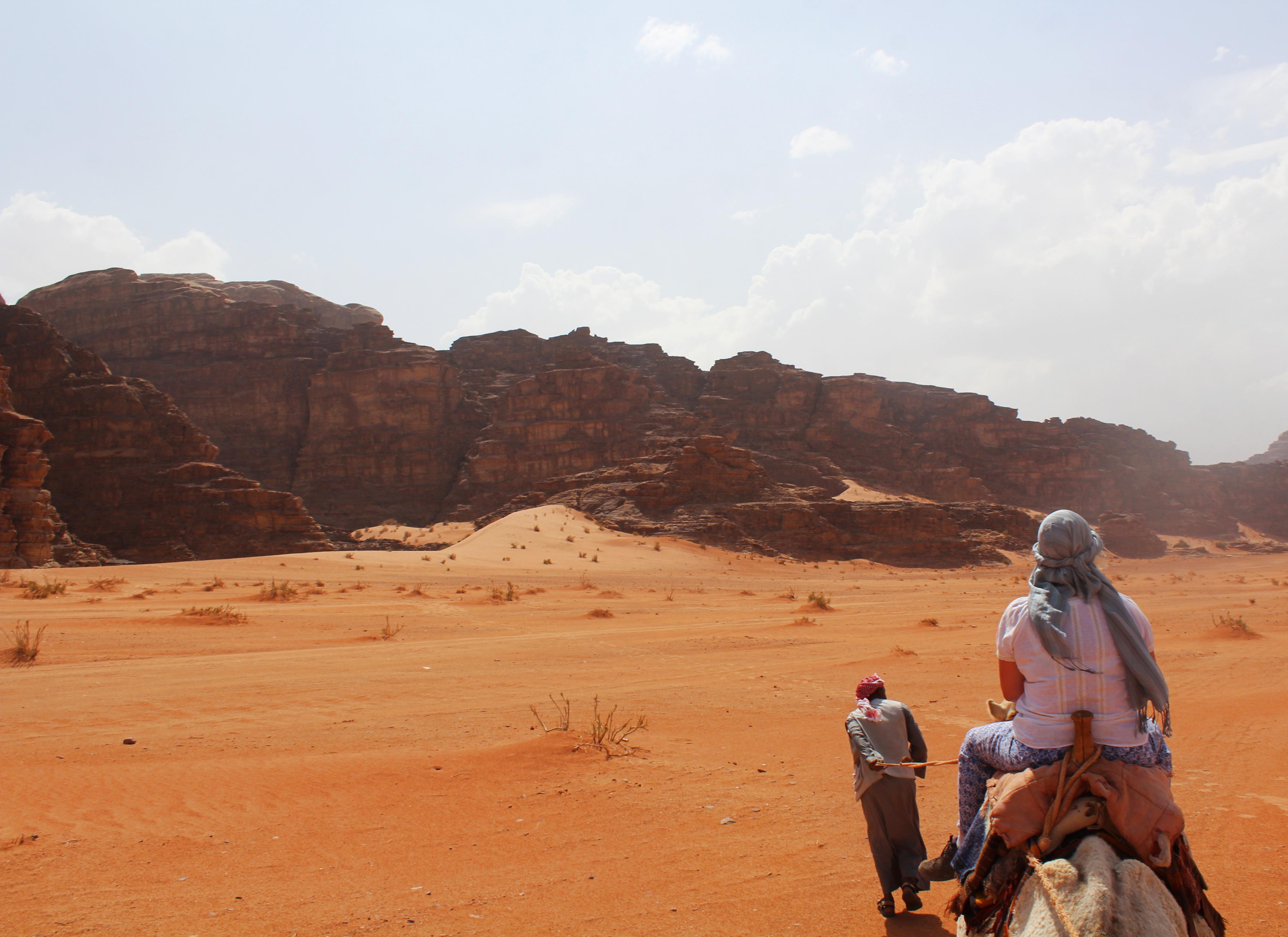 Camel_Wadi_Rum2