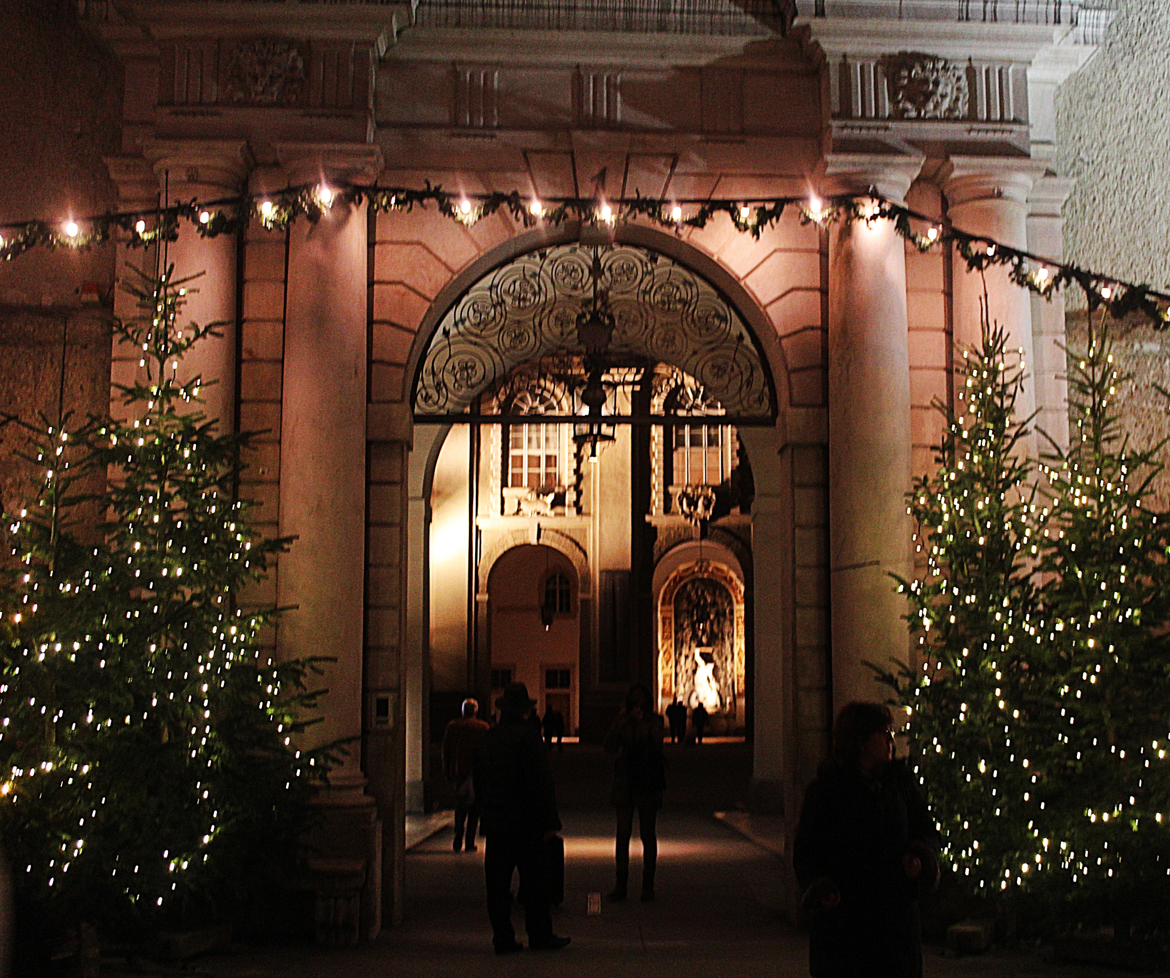 Christbäume_Weihnachtsmarkt