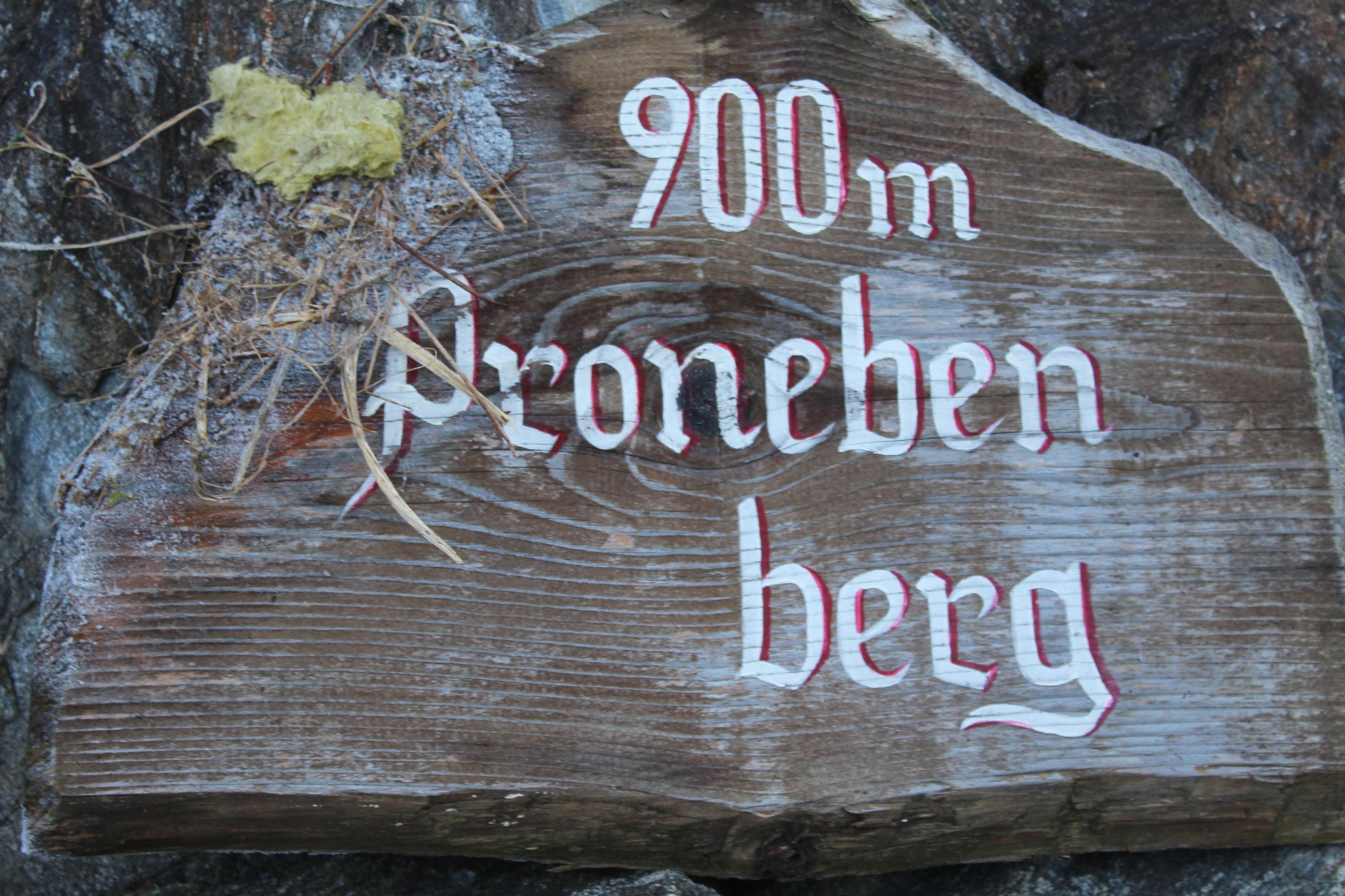 Pronebenberg
